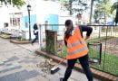 """Acciones de mejora y embellecimiento en plaza """"San Martín"""