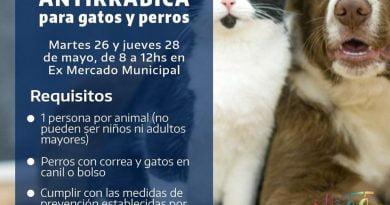 Vacunación antirrábica para perros y gatos