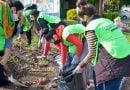 La Comuna libreña continúa eliminando basurales y embelleciendo espacios verdes en los barrios de la ciudad